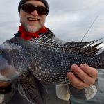 Cape Cod - Black Sea Bass Catch