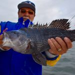 Holding a Black Sea Bass