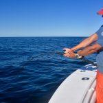 Man Reeling Heavy Bluefin Tuna