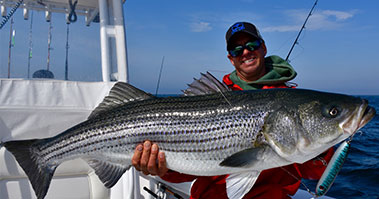 Fisherman Holding Striped Bass