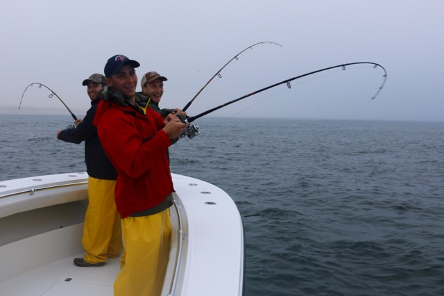 Fishing for striped bass in cape cod reel deal fishing for Striper fishing cape cod