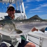 Very Large Striped Bass