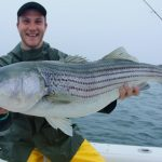 Top-water Striped Bass in Cape Cod