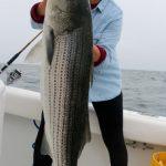 Long Top-water Striped Bass