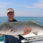 Fisherman Holding Large Striped Bass Catch