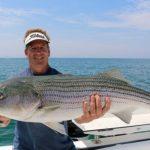 Fisherman Holding Large Striped Bass Catch