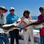 Group with Four Striped Bass
