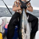 Bluefin Tuna - Medium Catch