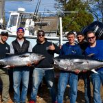 Group Holding Couple of Bluefin Tuna