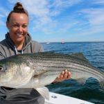 Cape Cod Striped Bass Catch