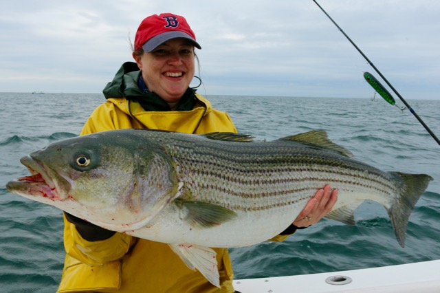 Woman Holding Striped Bass Catch