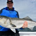 Provincetown Truro Striped Bass