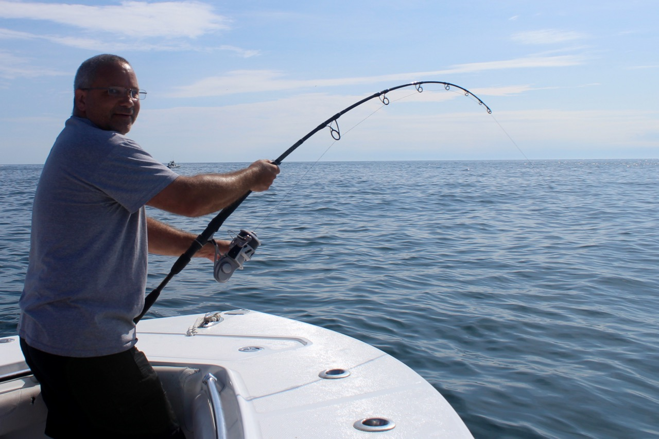 Tuna and shark charters for Cape cod fishing