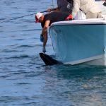 Reeling in a Tuna Fish