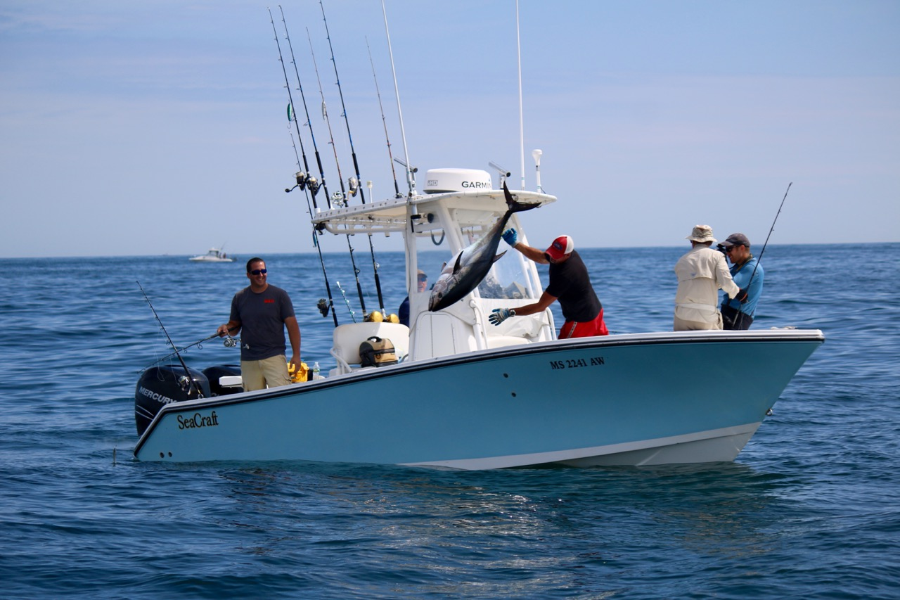 tuna and shark charters