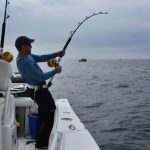 Fisherman Fishing for Cape Cod Tuna
