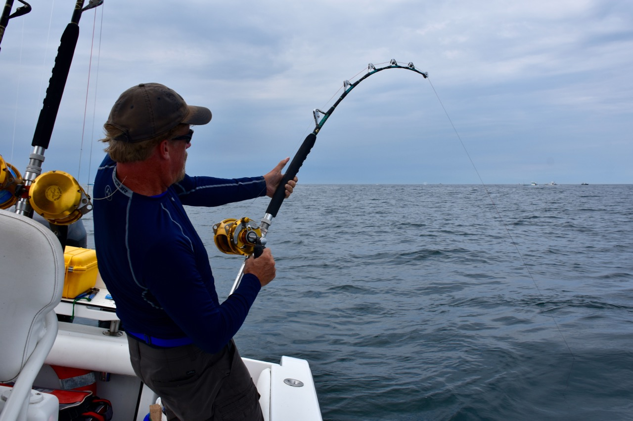 Fishing for Tuna in Cape Cod