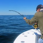 Fisherman Fishing in Cape Cod Waters - Tuna