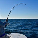 Fisherman Reeling Large Tuna