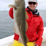 Large Cod