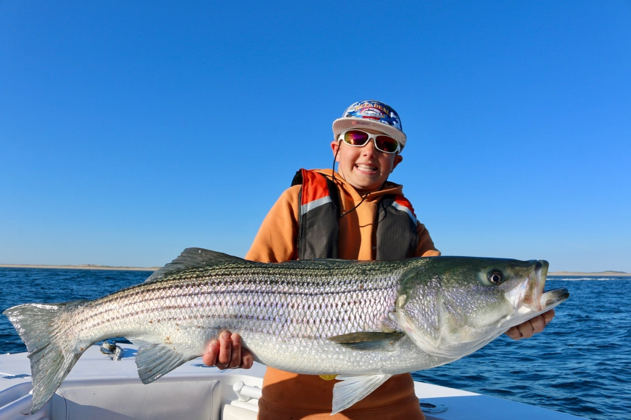 June striped bass fishing charters cape cod provincetown for Cape cod fishing