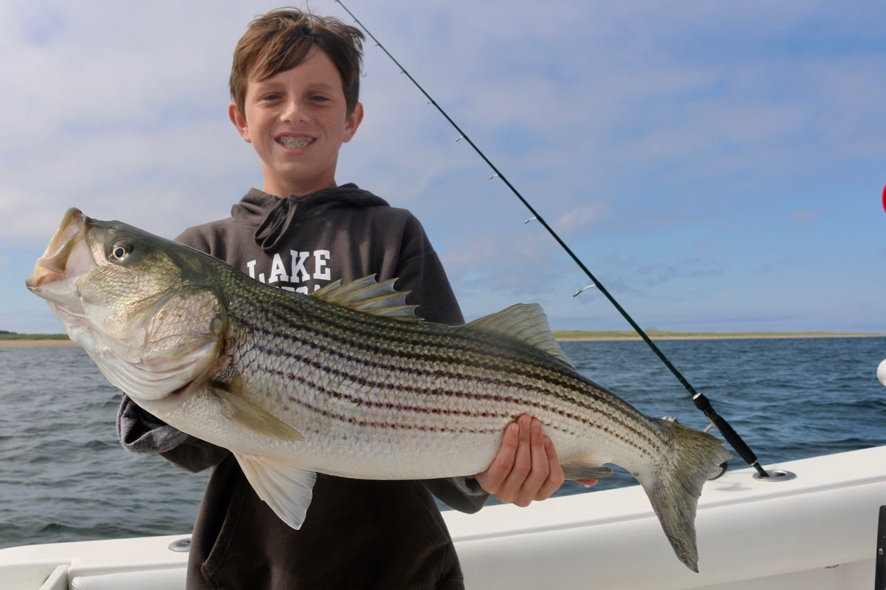 Cape Cod Light Tackle Deep Sea Fishing Trips
