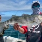 Fishing in Massachusetts Striped Bass