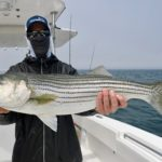 Light Tackle Cape Cod Striped Bass Fishing