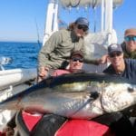 Truro Provincetown Bluefin Tuna Fishing Massachusetts