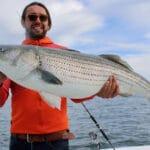 Striped Bass Fishing Massachusetts